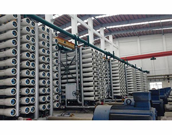 唐山钢厂200t二级反渗透+EDI设备